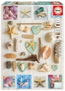 1000 Seashells collage